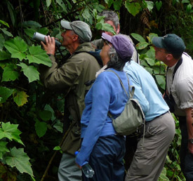 Birders in Colombia. Photo by Gina Nichol.