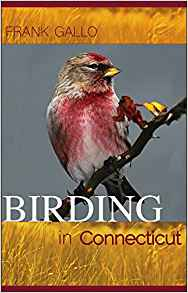Birding in Connecticut, a new book by Frank Gallo.